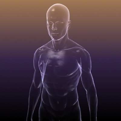 Physical body diagram