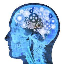 Categorizing Brainwave States (Gamma, Beta, Theta, Alpha & Delta
