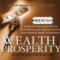 Wealth pack cd cover